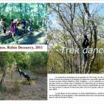 trek dance